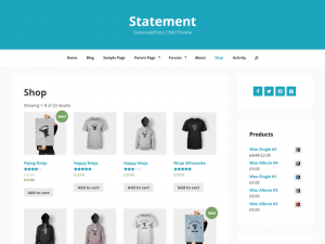 009-Statement-screenshot